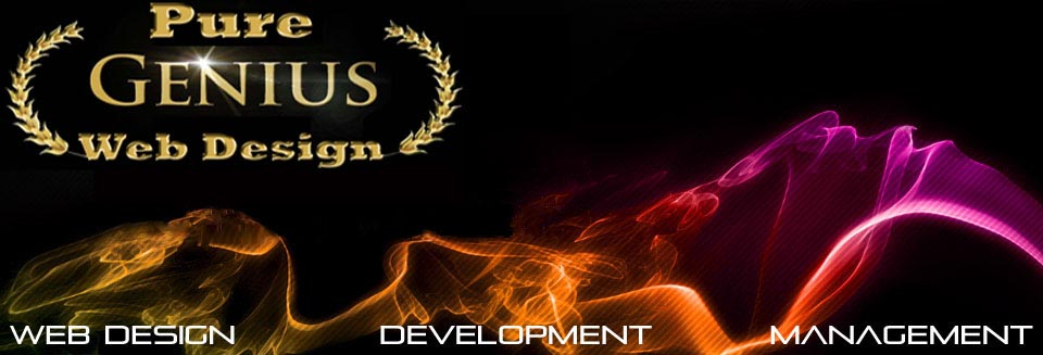 Pure Genius Web Design Web Development Fort Lauderdale Fl